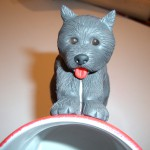 grå hund framifrån